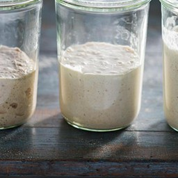 My Sourdough Bread Starter made me know the meaning of life!