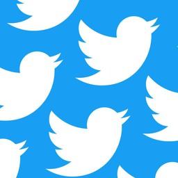 Embedding Twitter in GoNevis