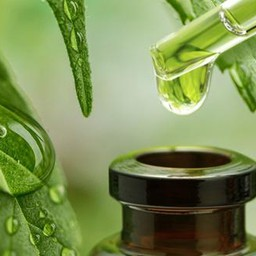 The Difference of CBD Tinctures And CBD Liquids