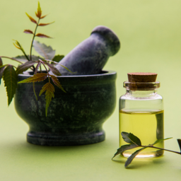 Neem Oil For Eczema Skin — Neem Oil Can Keep Your Skin Healthy