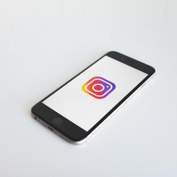 A Guide To The Insta Bot